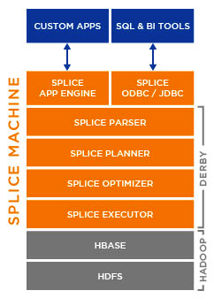 the Splice Machine architecture